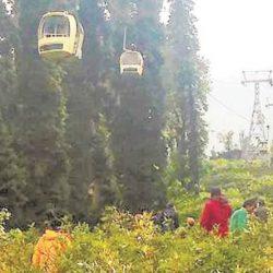 مقتل 7 هنود بسبب سقوط شجرة صنوبر علي عربة تلفريك في منتجع غولمارغ السياحي