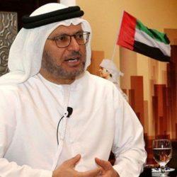وزير الدولة الإماراتي للشؤون الخارجية : لا حوار مع قطر قبل أن تغير سياساتها