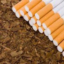 التدخين وتعاطي منتجات التبغ تقتل 7 ملايين شخص خلال عام