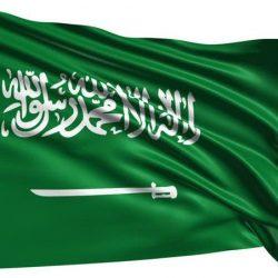 المملكة العربية السعودية تبارك تطهير مدينة الرقة من قبضة داعش الإرهابي