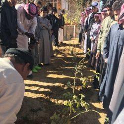 """فيصل بن خالد بن عبدالعزيز يعتمد تغيير مسمى """"وادي بقرة"""" إلى """"الغيناء"""""""