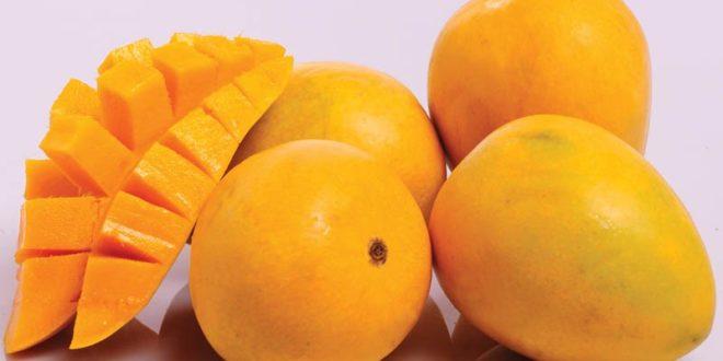كيف تساعد حمية المانجو في إنقاص الوزن ؟
