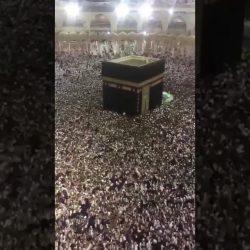 بالفيديو بريطانية مسلمة تدعو شعبها للإسلام من أمام الحرم