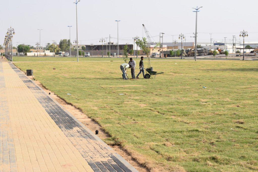 بلدية محافظة تيماء تنفذ مشروع التجميل والتحسين في مختلف الشوارع الرئيسية والمداخل بالمحافظة وعدد من المواقع