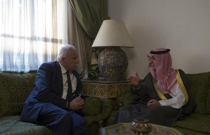 وزير الخارجية يبحث العلاقات الثنائية مع نظيره الفلسطيني