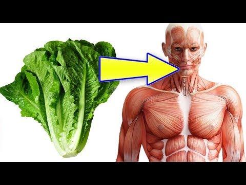 فوائد تناول الخس بانتظام لن تصدق ماذا يفعل الخس بجسم الانسان والقيمة الغذائية للخس