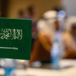 الإمارات تبدي ترحيبها الشديد بدعوة المملكة لعقد قمتين خليجية وعربية