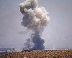 """احباط تونس عملية تهريب شحنة """"أشبال نمور"""" إلى ليبيا"""