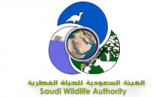 الهيئة السعودية للحياة الفطرية تعلن أسماء المرشحين لإختبار وظائف مراقبي الأمن والسلامة