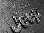 """تعيين فيات كرايسلر رئيس إنفينتي رئيسا لقطاع سيارات """"jeep"""""""