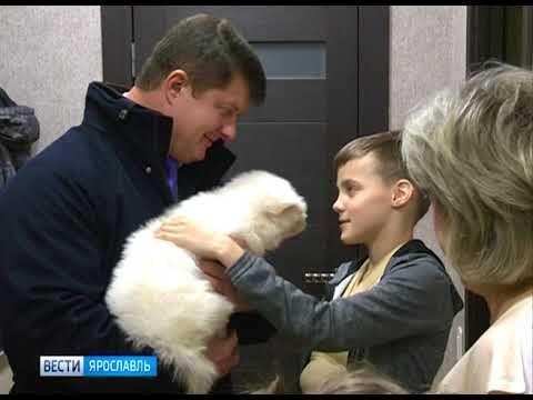 بوتين يهدى طفل روسى جرو من جرائه
