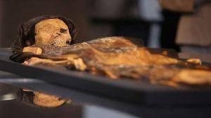 العلماء يكتشفون ما أكله الناس من آلاف السنين