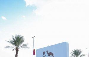 الأمير عبدالعزيز بن تركي يدشن فعاليات مصاحبة لمهرجان ولي العهد للهجن