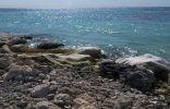 هيئة الأرصاد وحماية البيئة تضبط مخالفتين بالمناطق الساحلية