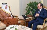 """"""" الرئيس المصري عبدالفتاح السيسي """" يؤكد تضامنه الكامل مع المملكة"""